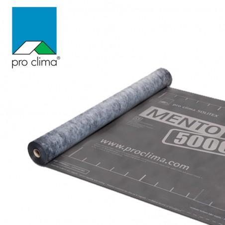 Monolitinė TEEE stogo membrana proclima mento 5000